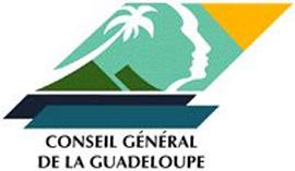 Fort Fleur-d'Epée logo